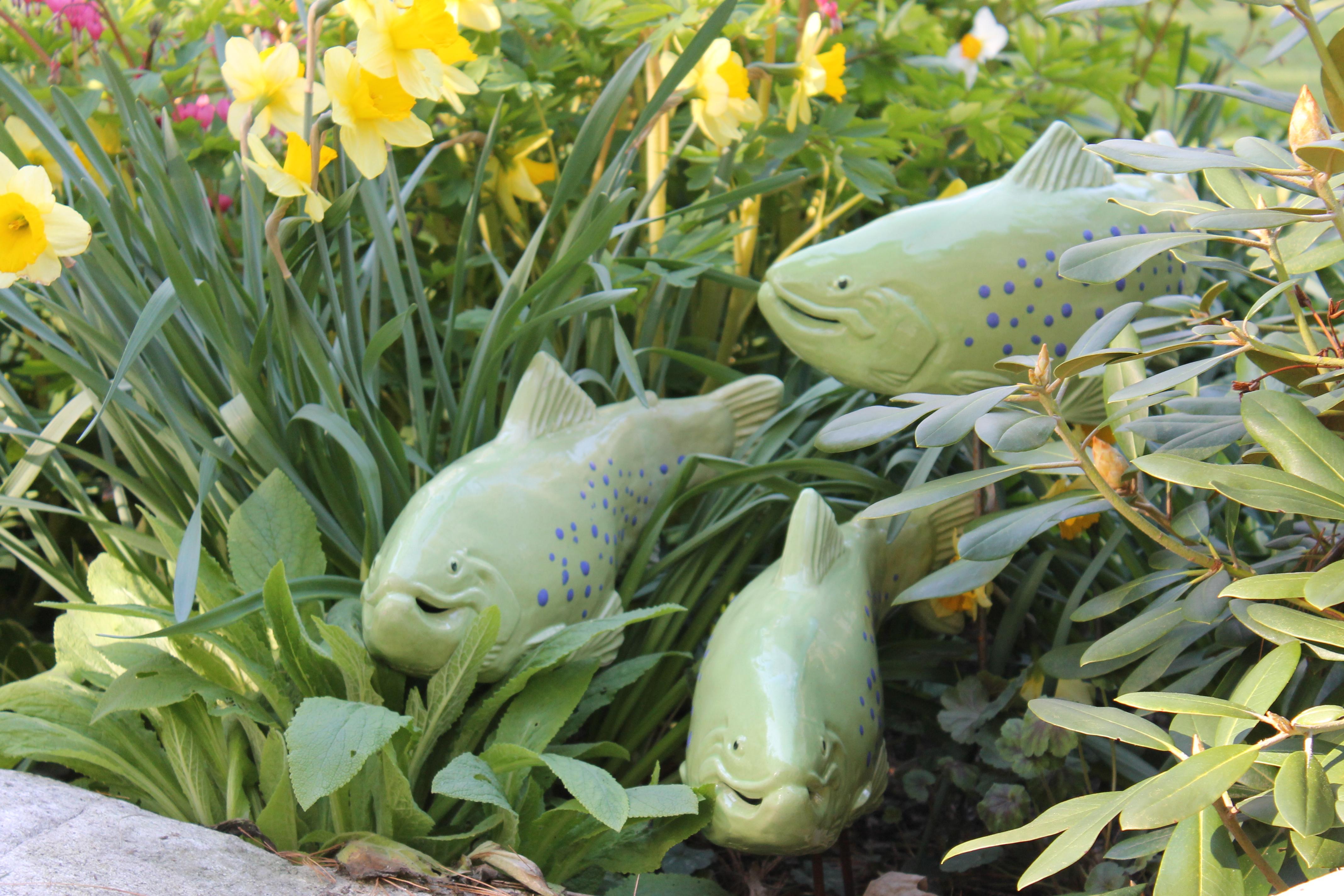 Press room for Garden fish